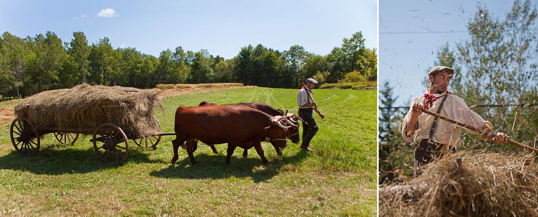 ox cart at Ross Farm Museum